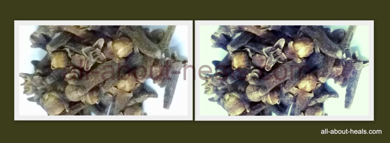 Clove/ Lavang